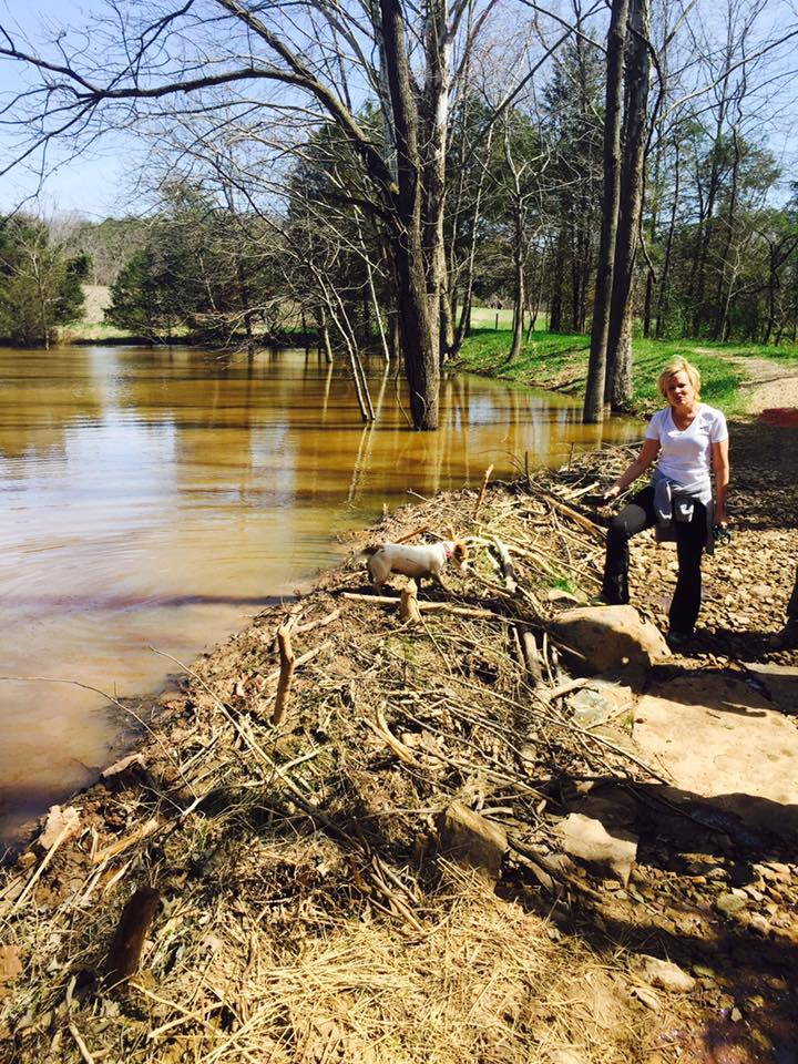 Lakes & Ponds | Willowsford Homeowners Association, VA